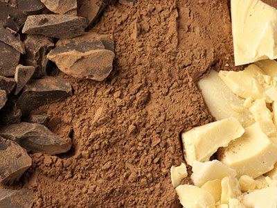 cocoa butter and cocoa solids