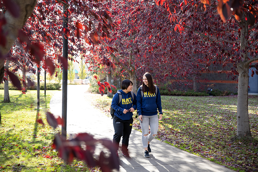 NAIT students walk to class on main campus in the fall