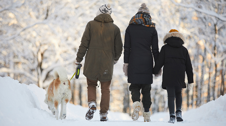 family walking in the winter